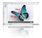 AVerVision Flash Plug-in Software